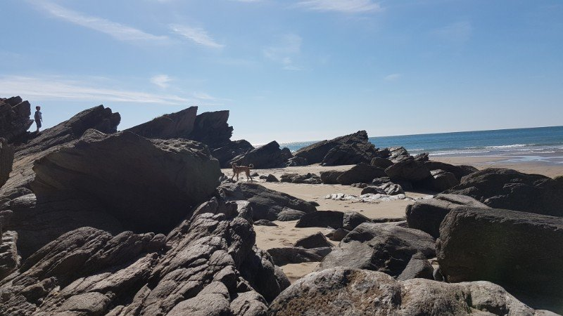 Whitsand Bay Rocks